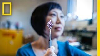 Xiaolin Zheng: Solar Stickers to Power the World   Nat Geo Live thumbnail