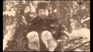 Рейтинг Тимофея Баженова. Путь Тимофеича