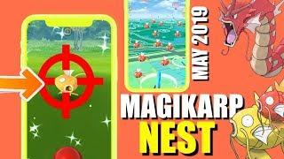 new magikarp nest coordinates pokemon go