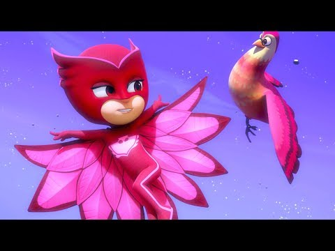 PJ Masks Episodes | Little Flying Friend 🦅 | PJ Masks Special | Cartoons for Children #146