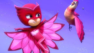 PJ Masks Full Episodes | Little Flying Friend 🦅 | PJ Masks Special | Cartoons for Kids #146
