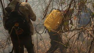 Bolivie: les pompiers combattent un incendie dans l'est du pays | AFP Images
