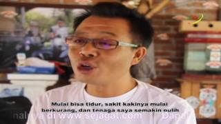 Jual Muricata Asli Original || Agen Jual K Muricata Original Murah Jakarta || 082336576080.