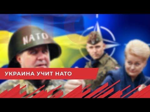 НТС Севастополь: Порошенко  военные НАТО учатся у ВСУ