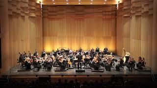 Orchestra sinfonica del CSI 22.09.2017 - 2° parte