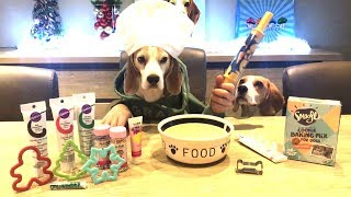 Dog Bakes Cookies : Funny Dog Louie The Beagle