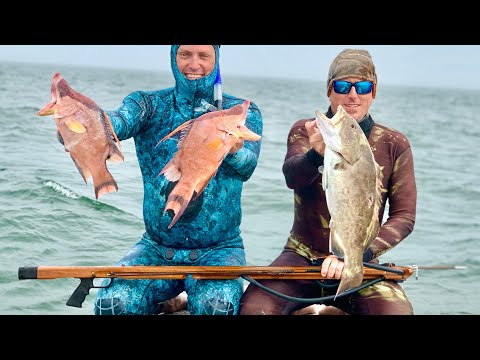 ****My DREAM SPEARGUN**** SPEARFISHING , My Gear And A Exciting NEW COMPANY