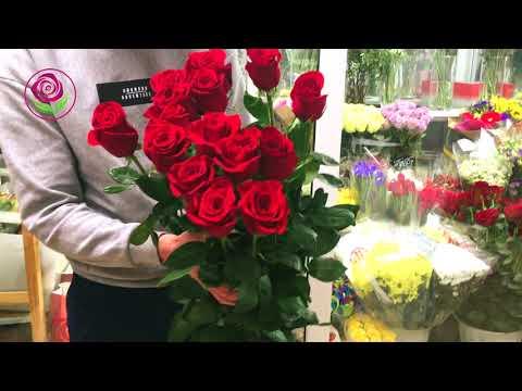 Розы 15 метра от салона ДариЦветы
