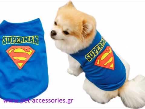 68e3624b516 Ρούχα για σκύλους T-shirt φανελάκια - YouTube