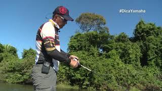 Confira essa super dica para a pesca de tucunaré – Dica Yamaha com Johnny Hoffmann