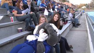 Spike The Bulldog Mascot Video