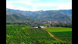 ¿Por qué se cultivan solo 7 millones de hectáreas en Colombia? - Noticias Caracol