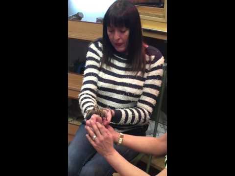 Liz Sheridan faces her fear