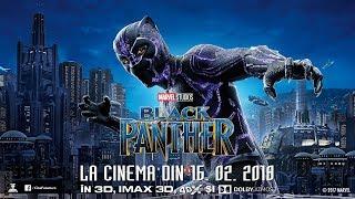 Pantera Neagra (Black Panther) - Spot10 - Entourage - Subtitrat - 2018