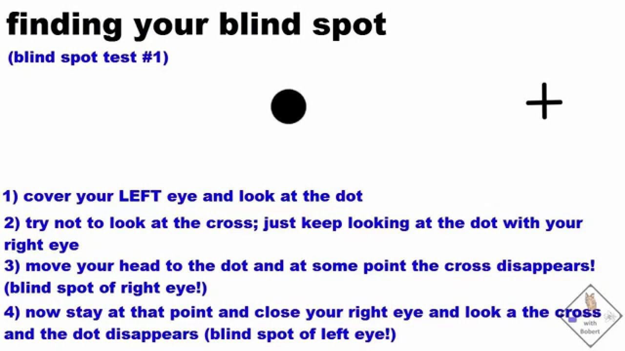 Five Ways To Find Your Blind Spot A Science With Bobert