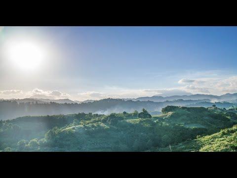 New AVP of Alviera Pampanga by Ayala Land