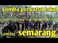 Lomba Perkutut Lokal Semarang Komunitas Perkutut Lembu Suara Burung Perkutut Lokal  Mp3 - Mp4 Download