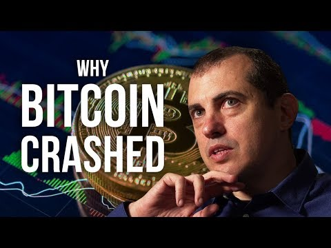 WHY BITCOIN CRASHED - Andreas Antonopoulos | London Real