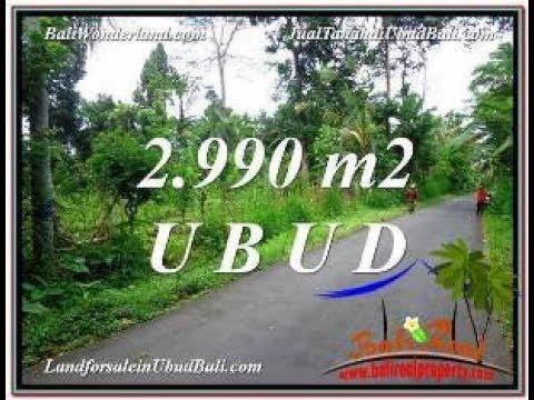 Beautiful PROPERTY LAND IN Ubud Tegalalang BALI FOR SALE TJUB591