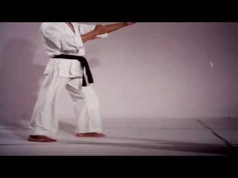 Taekwon-Do The Art Of High Impact Kicking (ITF 9dan)