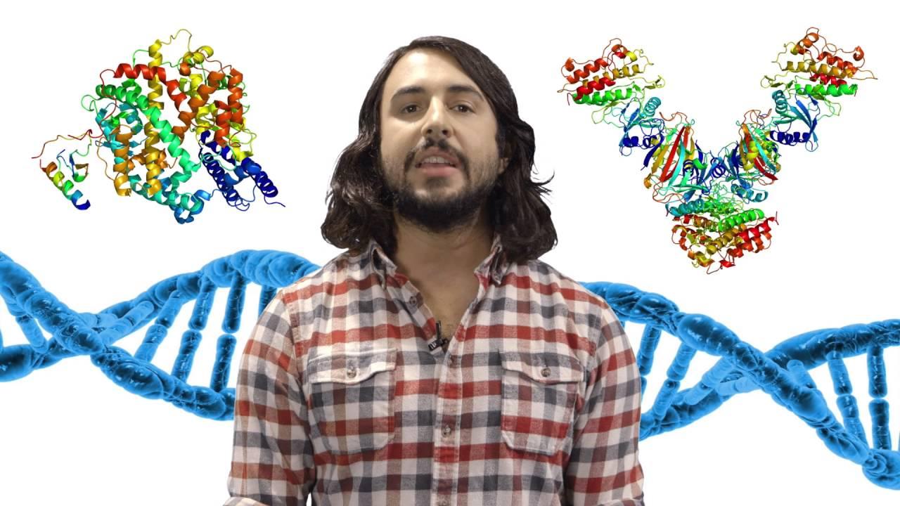 Introduction to Biochemistry