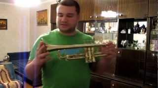 Как играть на трубе? Духовая труба для новичка