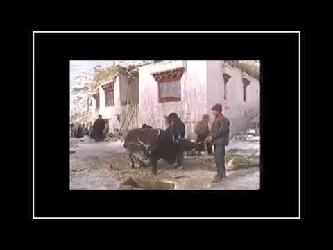 le-livre-des-morts-tibétain--bardo-thdol,-vie-après-la-mort-2/2