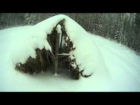 Покатушка на снегоходе
