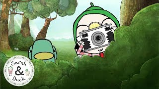 Camera - Quacky Flappy Clips - Sarah and Duck