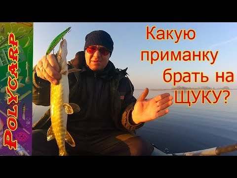зимняя рыбалка на днепре - 2017-11-28 19:39:33