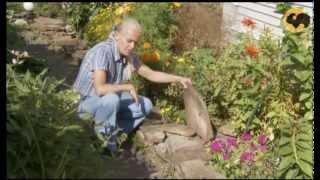 Освещение сада. САД день за днем №19(Сегодня вы узнаете, как правильно спланировать и устроить стационарное садовое освещение и зачем обрезать..., 2013-02-09T21:42:22.000Z)
