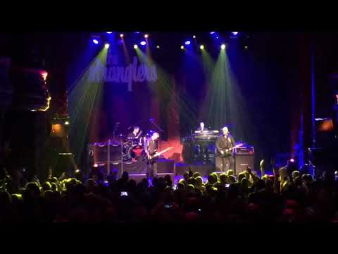 The Stranglers Always The Sun Live Paris La Cigale le 2017