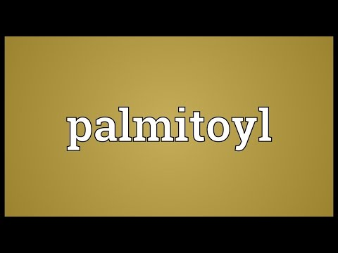 Palmitoyl Meaning