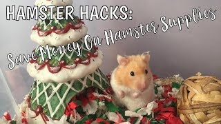 HAMSTER HACKS | Cheaper Alternatives To Pet Store Small Animal Supplies!