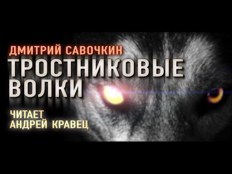 """Аудиокнига. Д.Савочкин """"Тростниковые волки"""". Читает Андрей Кравец"""