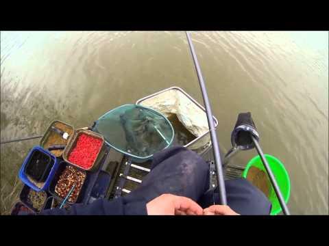 Stafford Moor MFS Silvers Fishing Festival