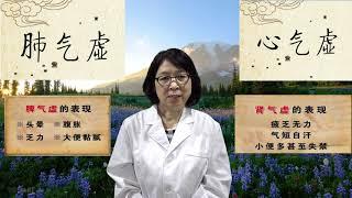 柳博士健康讲堂(2):谈气虚