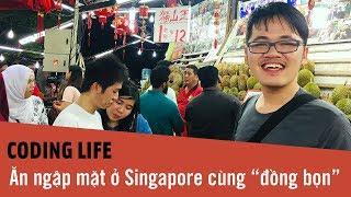 Coding Life Kì 6 - Ăn ngập mặt tại Singapore cùng đồng bọn, đập hộp Tripod mới