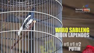Video NYARIS HATRIK, WIRO SABLENG GETARKAN HITAM PUTIH CUP download MP3, 3GP, MP4, WEBM, AVI, FLV Juli 2018
