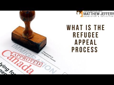 WHAT IS THE REFUGEE APPEAL PROCESS | Matthew Jeffery - Immigration Lawyer Toronto