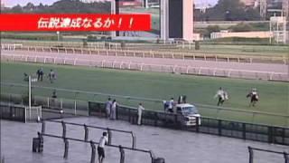 2010年8月22日に芸人小島よしおが挑んだ伝説の『ウマラソン』ク...