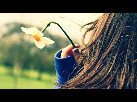 Stranger In Paradise! (Johnny Mathis)  (Lyrics)  Beautiful & Romantic 4K Music Video Album!