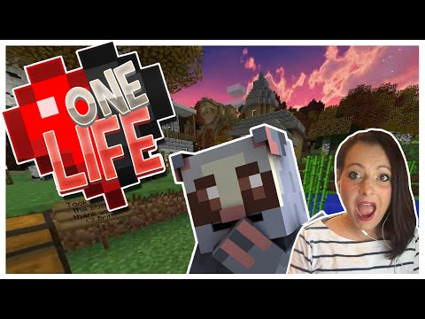 One Life - Episode 9 - A stick... really?