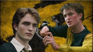 Why Was Cedric Diggory Sorted Into Hufflepuff?