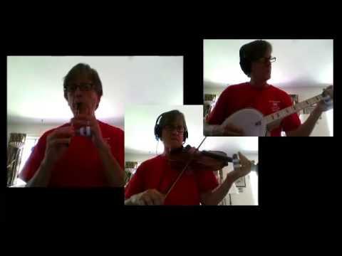 Fiddle Lessons by Randy: Rattlin Bog polka, 75 Pt1
