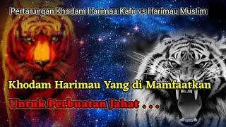 Pertarungan Khodam Harimau Kafir dan Muslim   Part 2