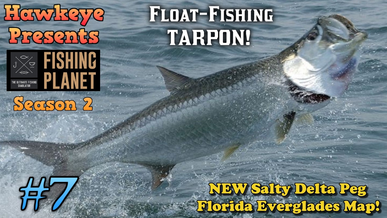 Florida Everglades Map.Fishing Planet S2 Ep 7 Float Fishing Tarpon On The New Salty