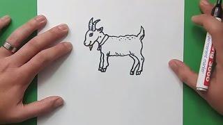 Como dibujar una cabra paso a paso 3 | How to draw a goat 3