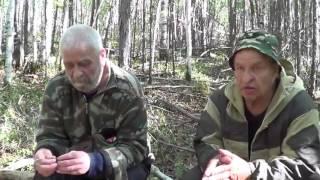 Интервью с охотниками. Нападение медведей на людей