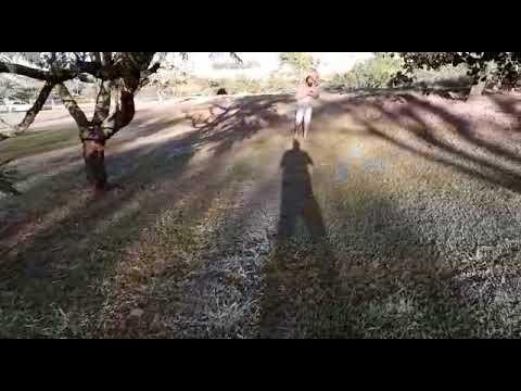 Vídeo mostra geada em madrugada gelada em parque da Capital